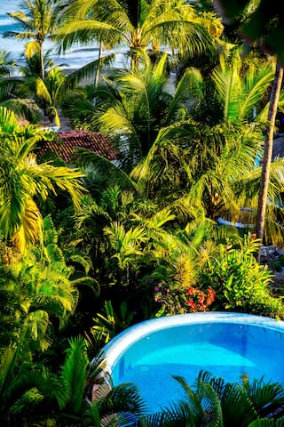 Our pool is nestled among our gardens.