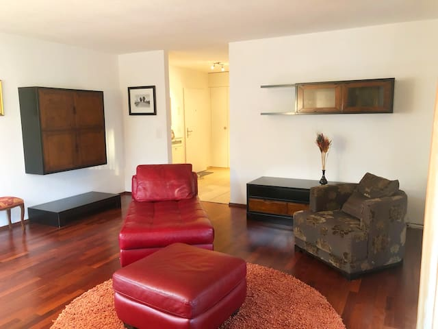 Beautiful Apartment on Zurich Lake