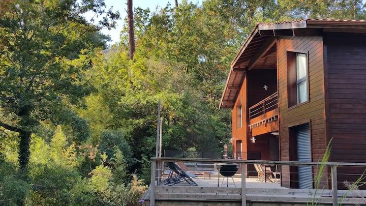 maison avec piscine dans la forêt