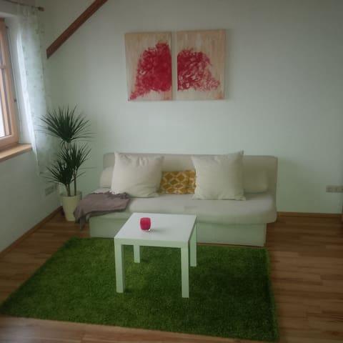 Dachgeschoß mit Terasse und Garten - Steyregg