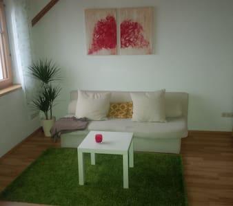 Dachgeschoß mit Terasse und Garten - Steyregg - Wohnung