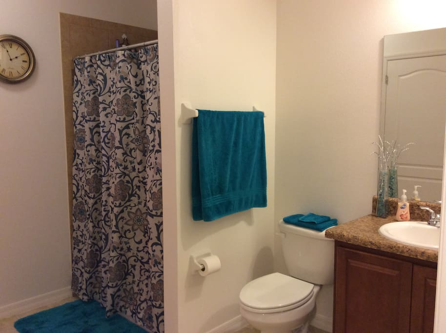 Very clean and large bathroom with walk in shower (no tub).