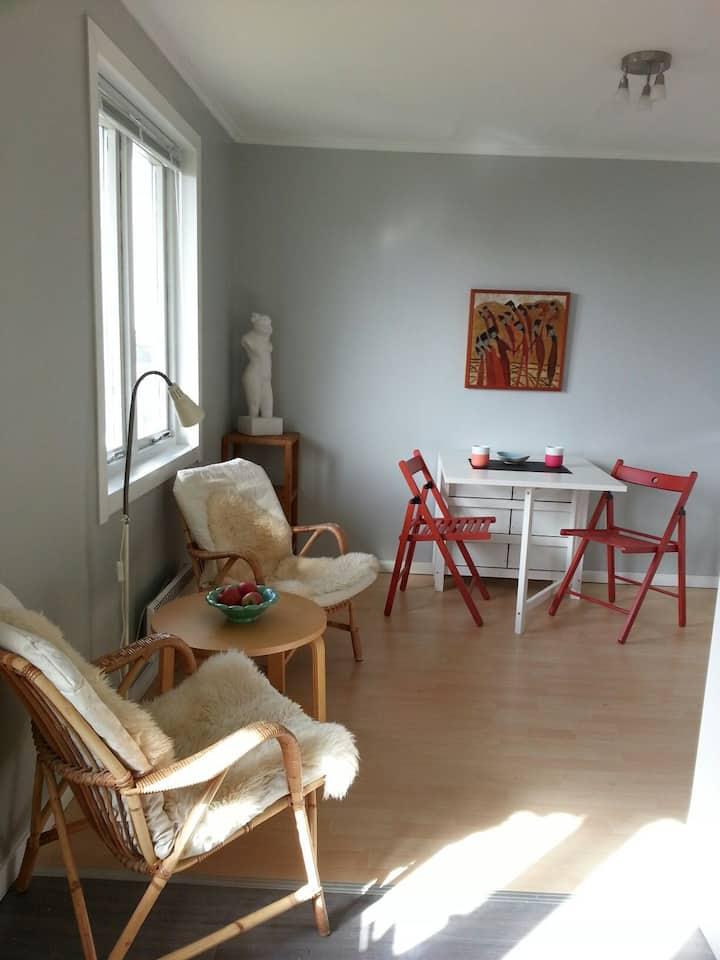 Cozy, small apartment