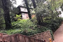 Our home is located right on the Dipsea Steps.  The second flight of the Steps is in the foreground here.