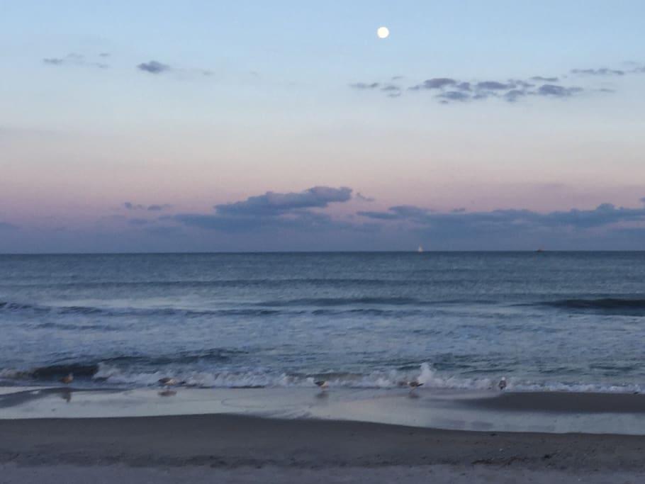 enjoy sunsets on the beach