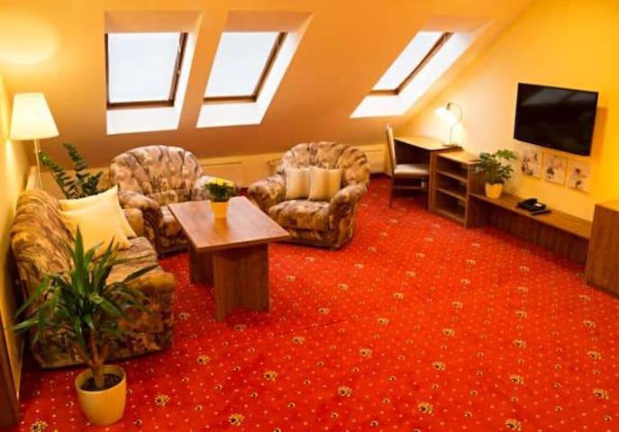 Apartmány Holiday - čtyřlůžkový apartmán (č. 2) - Třebíč - Aamiaismajoitus