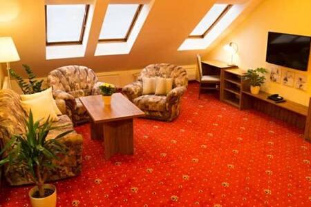 Apartmány Holiday - čtyřlůžkový apartmán (č. 2) - Třebíč - 住宿加早餐