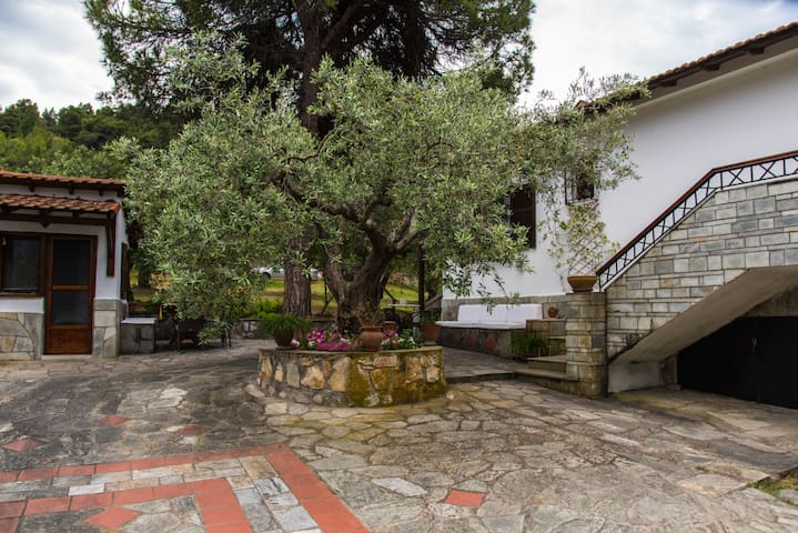 Sea View Traditional Villa