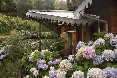 Sage Cottage - Una casa con vistas
