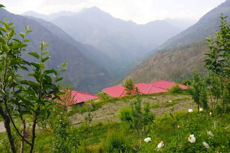 Standard tent | Sankri