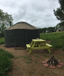 Little Yurt