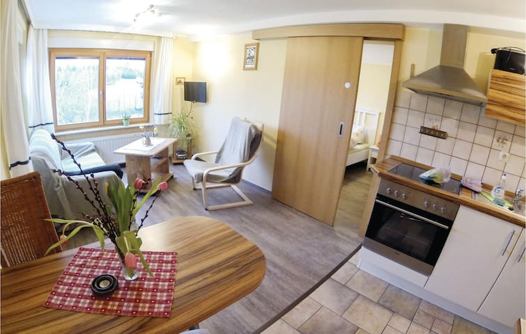 Holiday apartment with 1 bedroom on 32m² in Zeulenroda-Triebes
