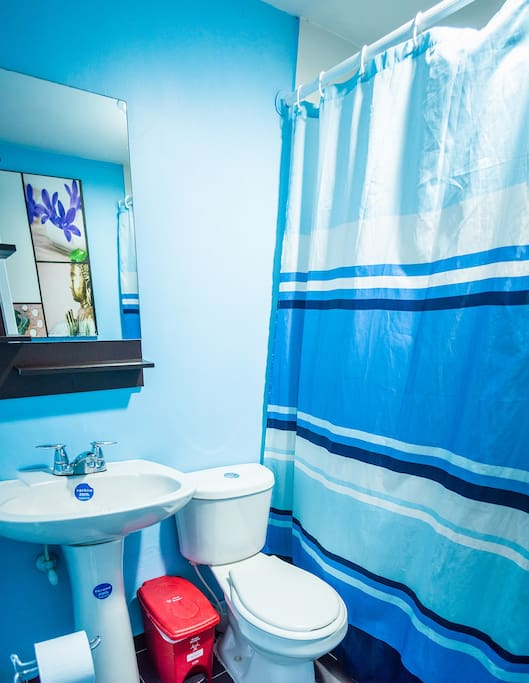 Private Bathroom in the Bedroom 12