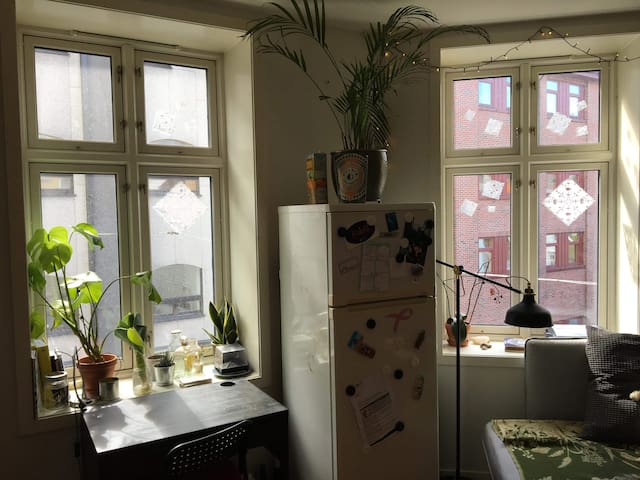"""Cozy apartment in """"Old Bergen"""", right by harbour"""