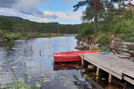 Hytte med 2 robåt, fiskekort, usjenert, hund ok