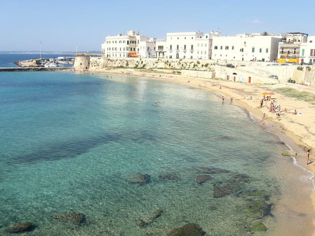 Holiday House in Salento south of Apulia, Italy - Matino - Daire