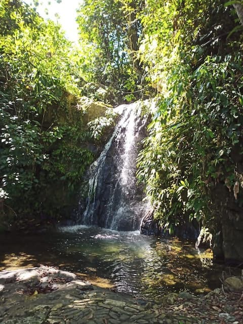 A little slice of paradise, your own waterfalls