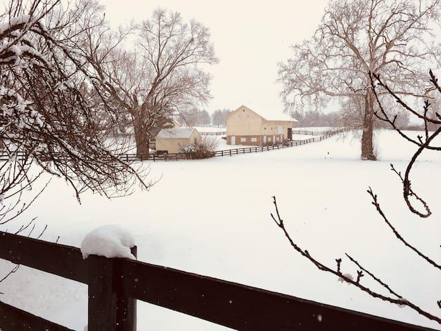 Wheatland Spring Farm Cottage House