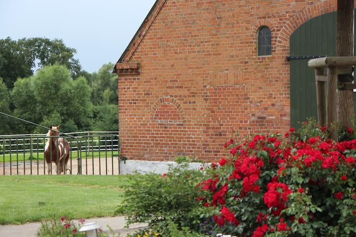 Stellplatz für Wohnmobil auf dem Bauernhof/ Ostsee