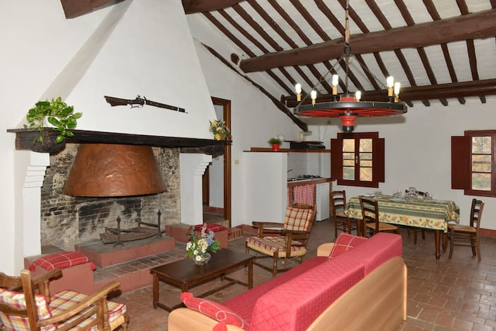 Camino - 5 beds apartment Tuscan countryside