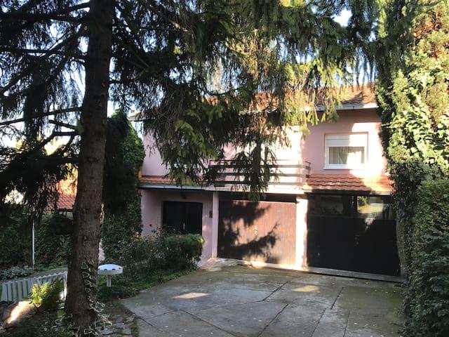 Exit Apartman Stojanovic