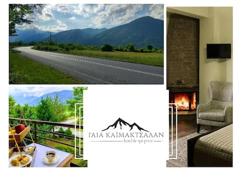 Double Room • fireplace • mountain view