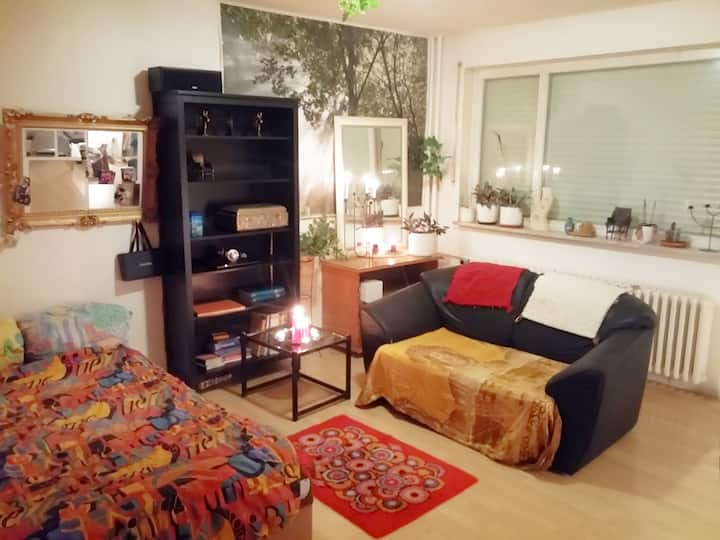 Sunny 1 Room Appartmemt, 47qm close to Mauerpark