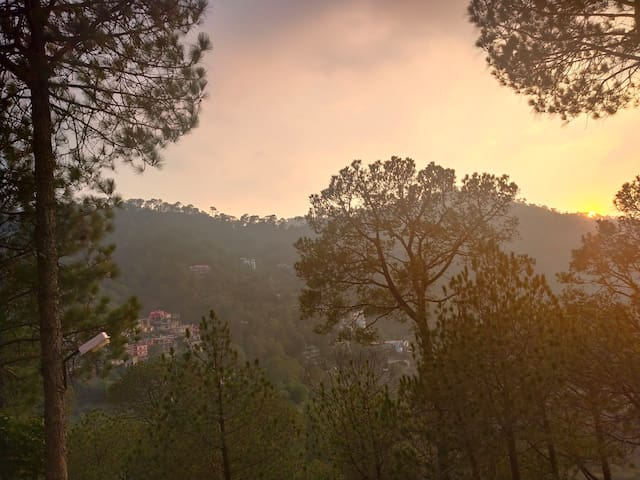 1 Bed Room | Toy Train | Pine Forest | Kasauli