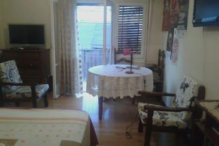 Cozy room Downtown! (Monastiraki sq.) - Apartment