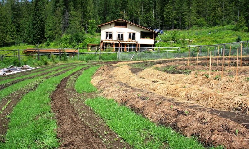 Argenta home on Organic working farm