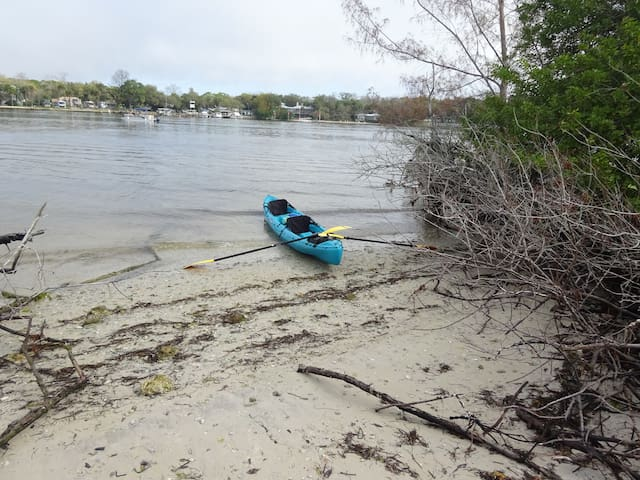 Paddle up to shore with the kayak and have a picnic.