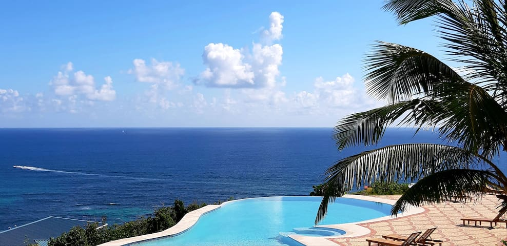Breathtaking Ocean views Infinity pool 3bd 2.5 bth