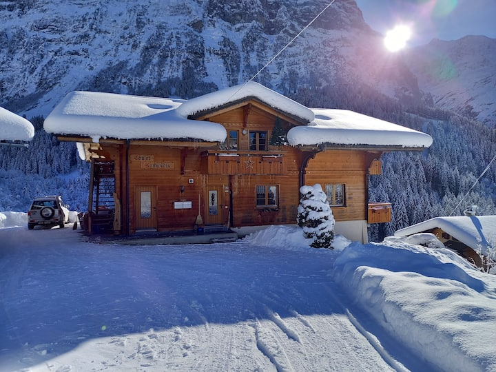 2 rooms appartement  / Eiger view/ mountain view