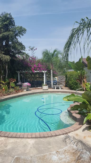 Beautiful pool and surround for guest use, weather permitting.