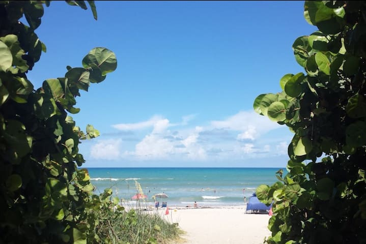 Beach Condo- Unbeatable Location! - Indialantic