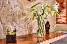 Tulip Penthouse