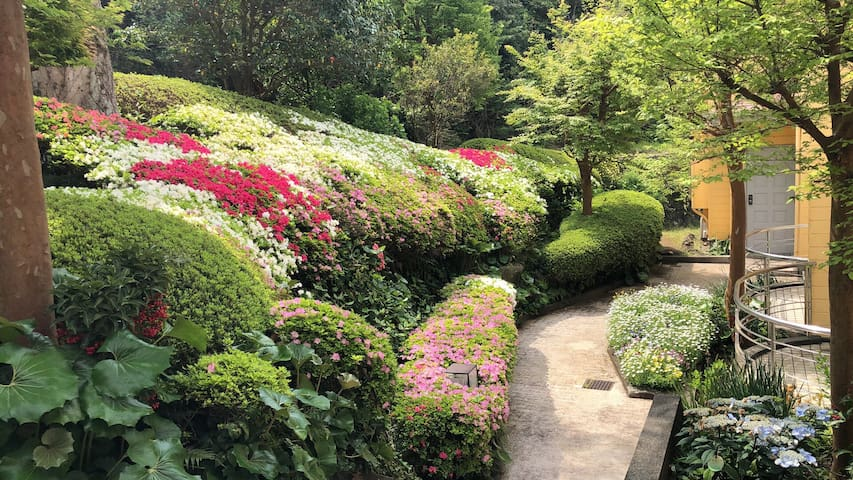 伊道荘園B栋 整栋花园式别墅 步行到海岸仅需10分钟 天然温泉