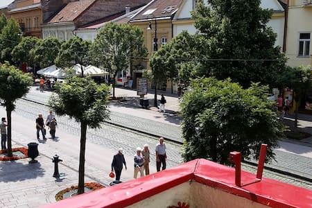 Košice (Hlavná) - in the center - main street - Košice - Daire