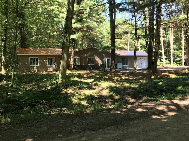 House  in the woods (Saugatuck Township) - Fennville - Huis