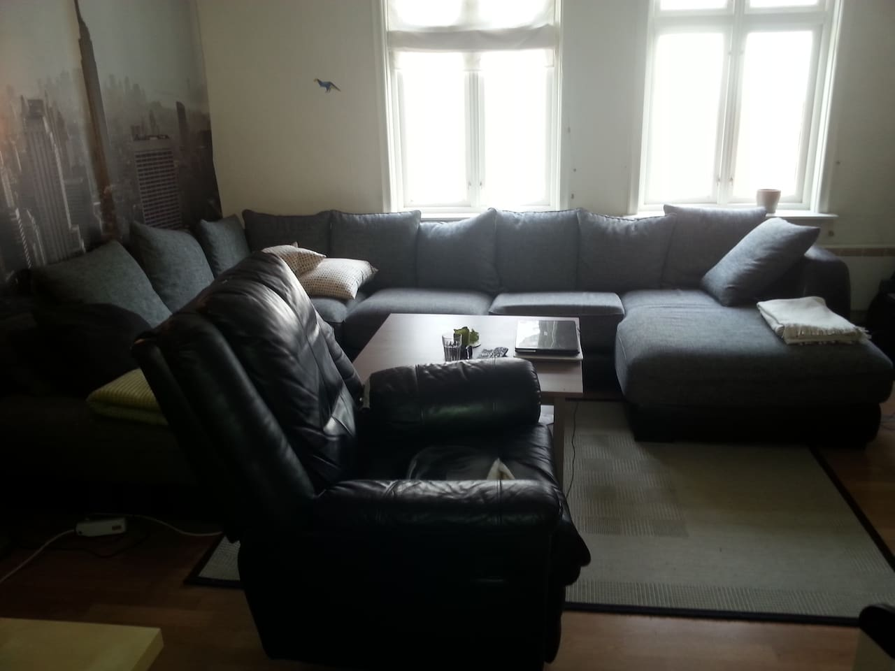 Living room. Fairly new couch.