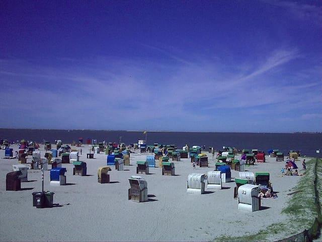 Strandnahes Ferienhaus Nordseeküste
