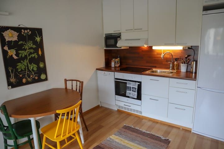 Kaksio keskustassa / one-bedroom city flat