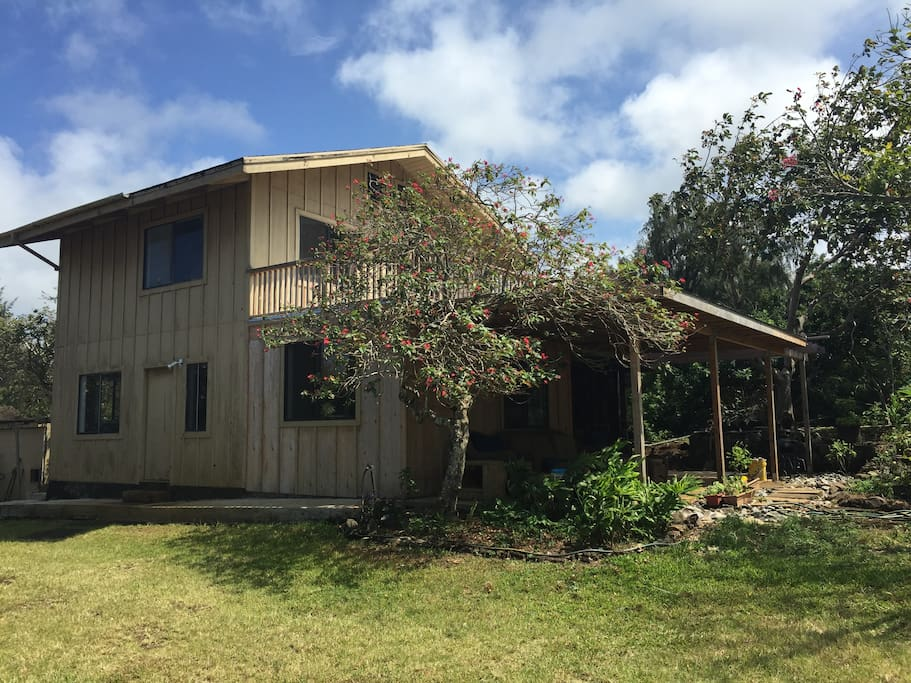 Rustic Hawaiian Home with Brand new Interiors-before repainting