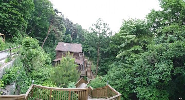 🌳🌲노르웨이숲 힐링숲속[🆎]물소리 별 눈덮힌 풍경~힐링~바베큐~벽난로 불멍 ~
