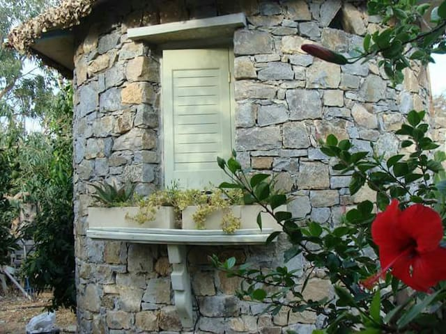 Eco-tiny-tasty-house ,beautiful garden. 200m beach
