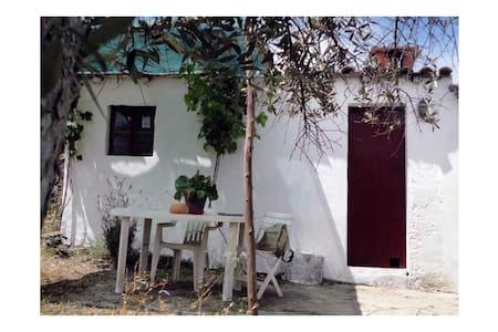 House in the country garden, Alentejo. - Nisa
