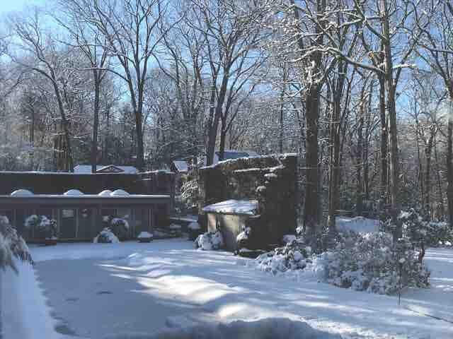ZEN snowfalls beautiful 4 seasons