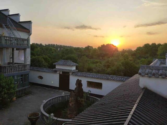 太湖盆景园花中四君子套间(梅、兰、竹、菊)