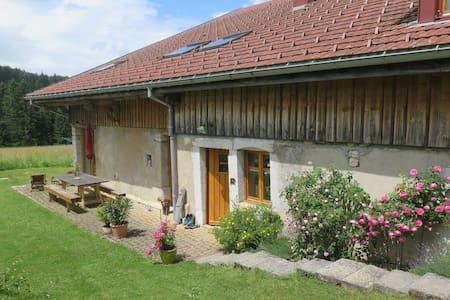 Chambres dans une ferme rénovée B&B - La Cluse-et-Mijoux - Oda + Kahvaltı