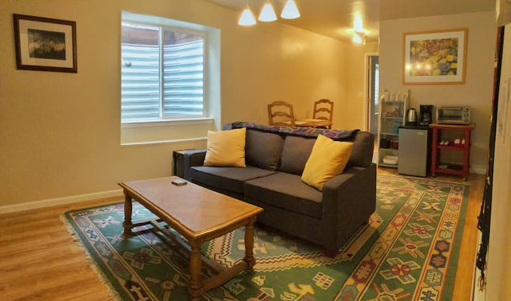 Large Private Bed, Bath, Living Room Downtown